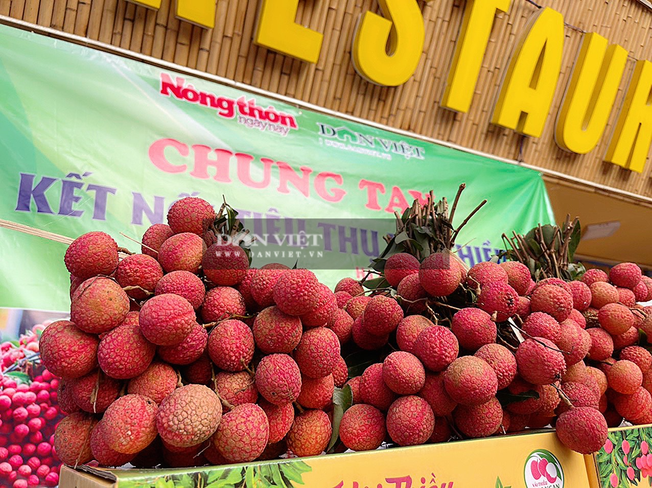 Vải thiều Lục Ngạn đã có mặt tại Trung tâm kết nối tiêu thụ nông sản Báo NTNN/ Điện tử Dân Việt - Ảnh 3.