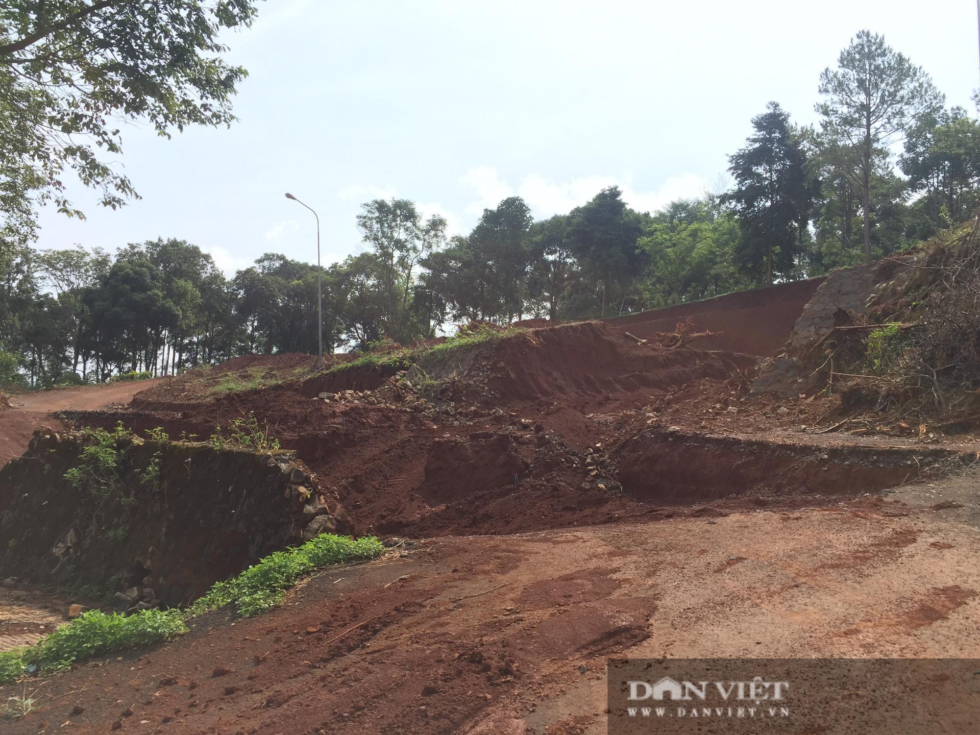 Sở Xây dựng Đắk Nông cấp giấy phép tạm không đúng thẩm quyền trong vụ Đồi Cường Thịnh - Ảnh 2.