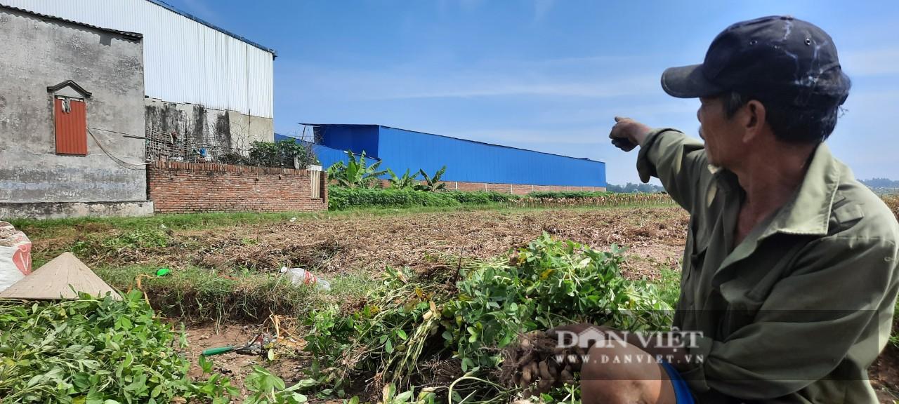 """Vĩnh Phúc: Xưởng sản xuất """"khủng"""" mọc trên đất nông nghiệp trái phép, gây ô nhiễm môi trường - Ảnh 2."""