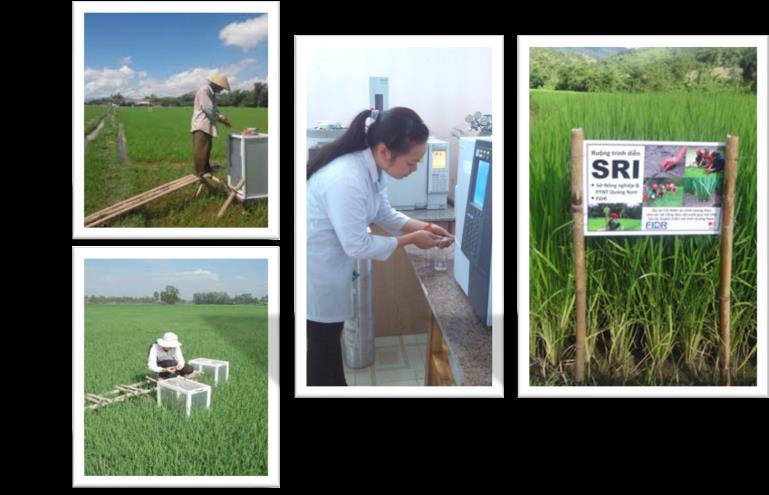Giới thiệu về Ngành Công nghệ kỹ thuật môi trường - Ảnh 2.
