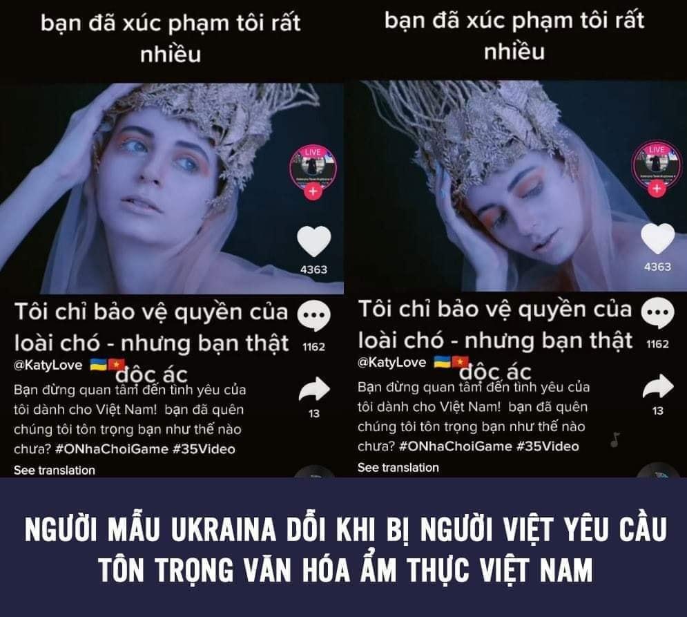 Chân dung cô nàng người mẫu Ukraina lên án người Việt ăn thịt chó - Ảnh 3.
