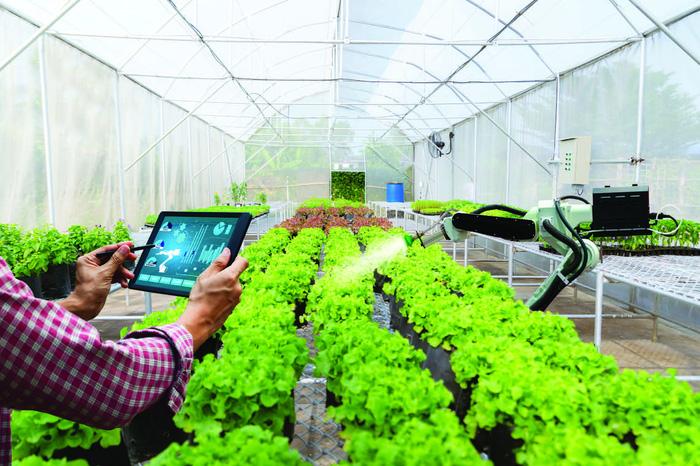 Ứng dụng số hoá kết nối tiêu thụ nông sản cho nông dân - Ảnh 2.