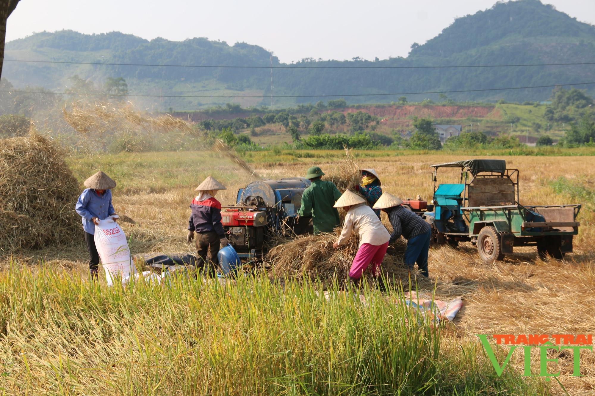 Sơn La: Nhìn lại chặng đường sau 10 năm xây dựng nông thôn mới - Ảnh 5.