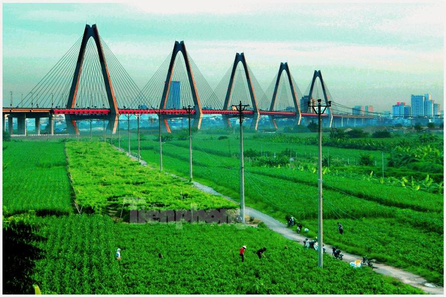 Quy hoạch hai bên sông Hồng: Vướng mắc di dân, sử dụng đất bãi - Ảnh 1.