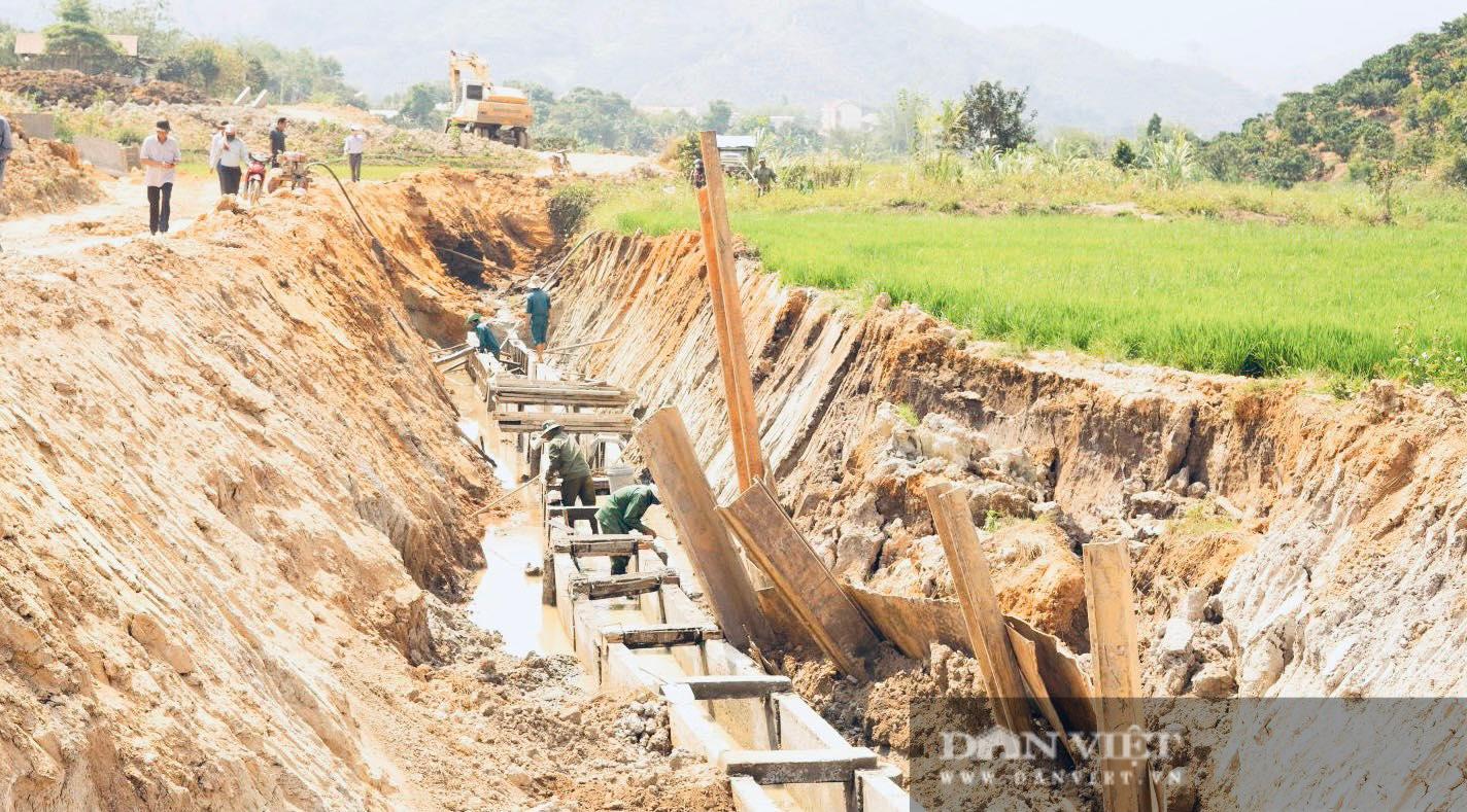 Đắk Nông: Thanh tra 2 dự án do Ban QLDA các công trình NN&PTNT làm chủ đầu tư - Ảnh 1.
