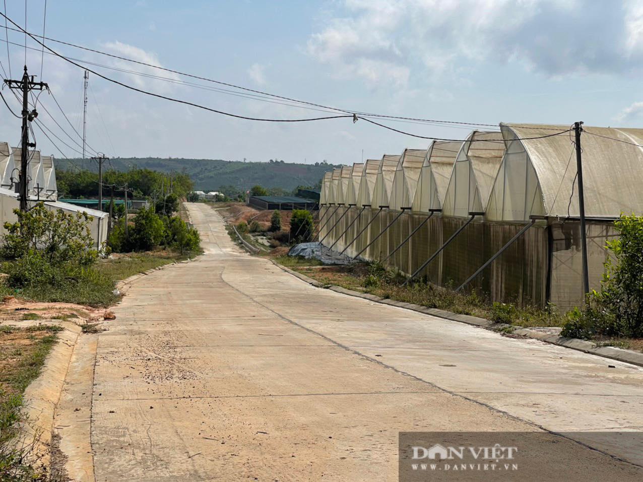 Đắk Nông: Thanh tra 2 dự án do Ban QLDA các công trình NN&PTNT làm chủ đầu tư - Ảnh 2.