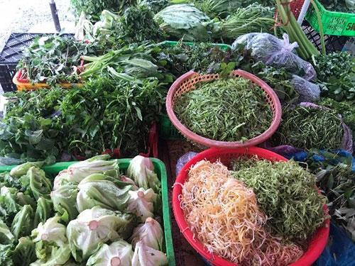 Bình Thuận: Giá rau xanh bỗng tăng mạnh, người mua ăn dè sẻn, tiểu thương tiết lộ điều bất ngờ - Ảnh 1.