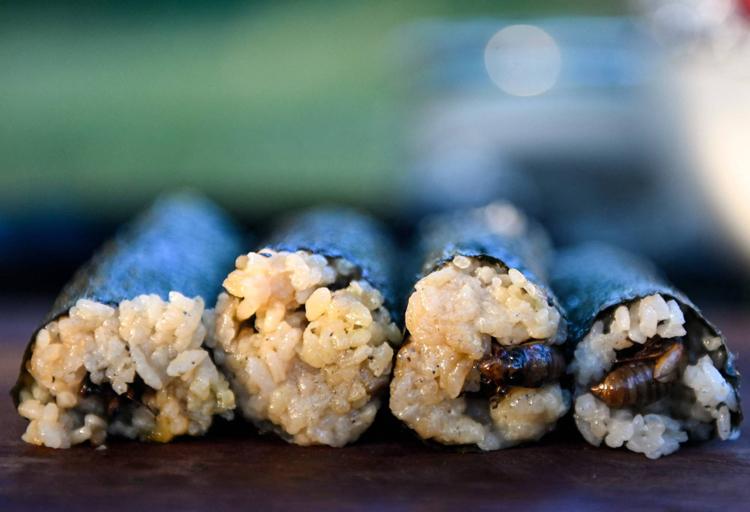 """Loại sushi làm từ con vật kêu inh tai nhức óc suốt mùa hè khiến các """"thượng đế"""" nhìn thì ghê nhưng ăn lại mê - Ảnh 1."""