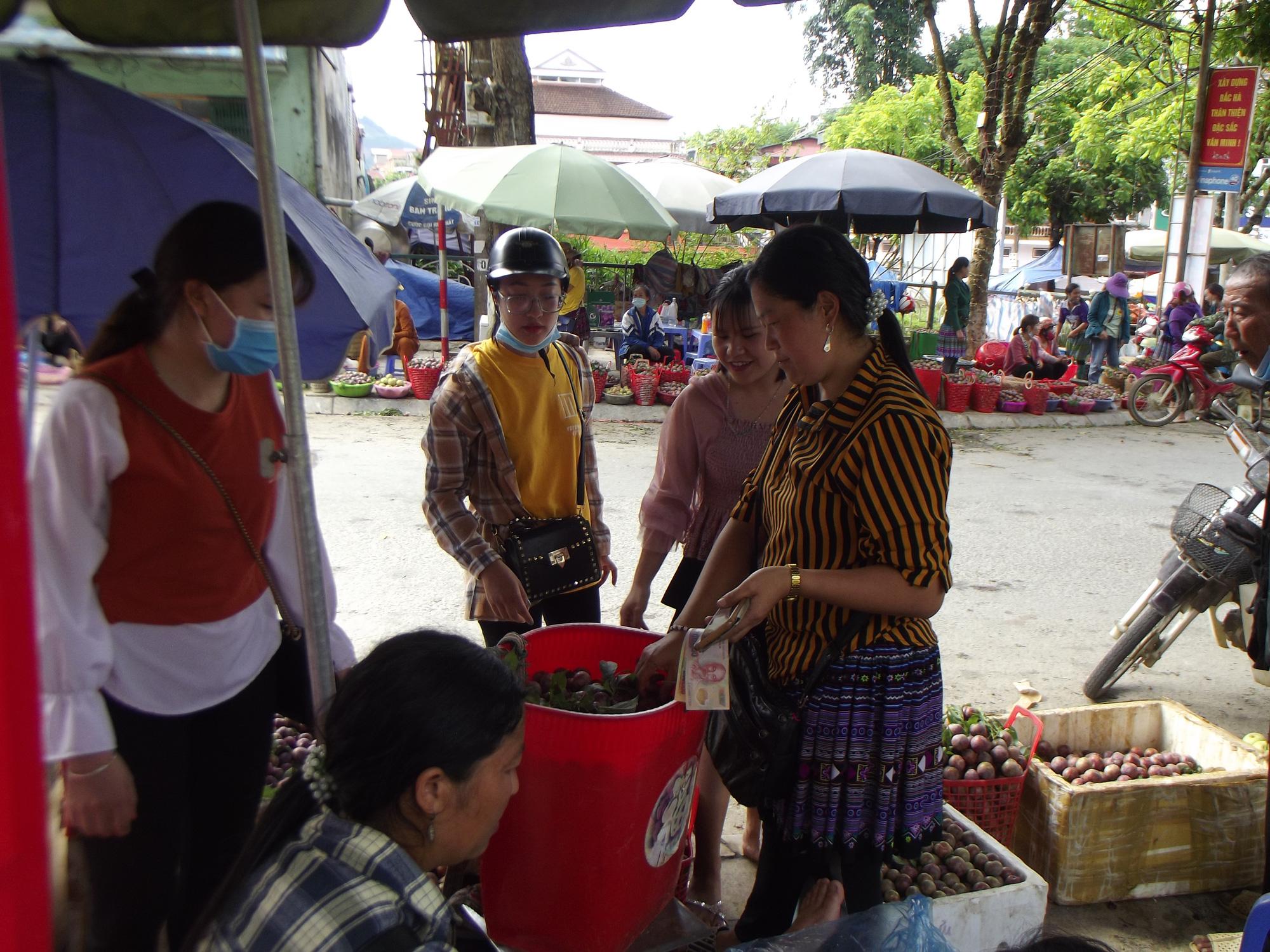 Lào Cai: Vào mùa mận máu ruột đỏ rực, quả bé tí ai cũng thích mua, đặt hàng đều đều qua Zalo, Facebook - Ảnh 3.