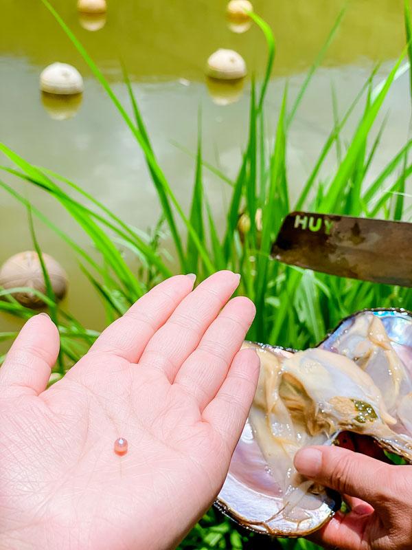 Lâm Đồng: Trai đẹp thôn Âm Phủ nuôi con không biết chạy, hàng năm nhả ngọc quý mà thu hàng trăm triệu đồng - Ảnh 2.