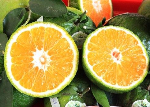 """Dù giá có cao đến đâu thì 7 loại trái cây không hạt này  vẫn """"làm mưa làm gió"""" trên thị trường - Ảnh 13."""