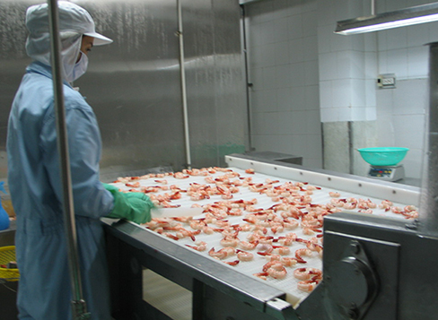Kết nối thủ tục kiểm tra chất lượng thức ăn thủy sản lên cơ chế một cửa quốc gia - Ảnh 1.