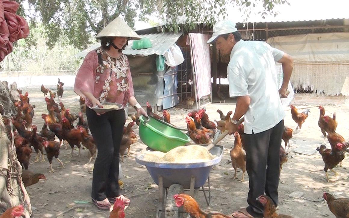 Long An: Nuôi con gì, làm nghề gì mà vợ chồng ông nông dân này mỗi năm kiếm nửa tỷ đồng ngon ơ?