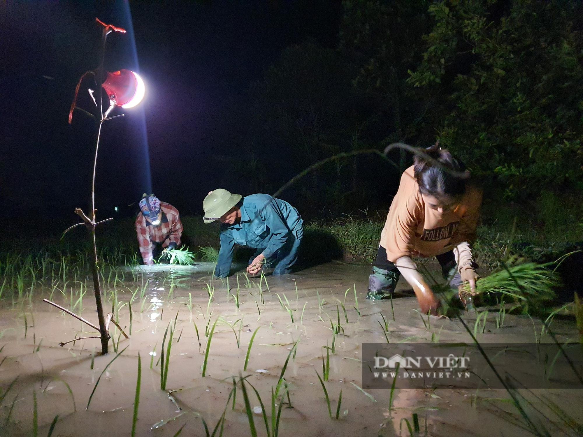 Thanh Hoá: Nắng nóng 40C nông dân Thanh Hóa chong đèn đi cấy lúa đêm  - Ảnh 4.