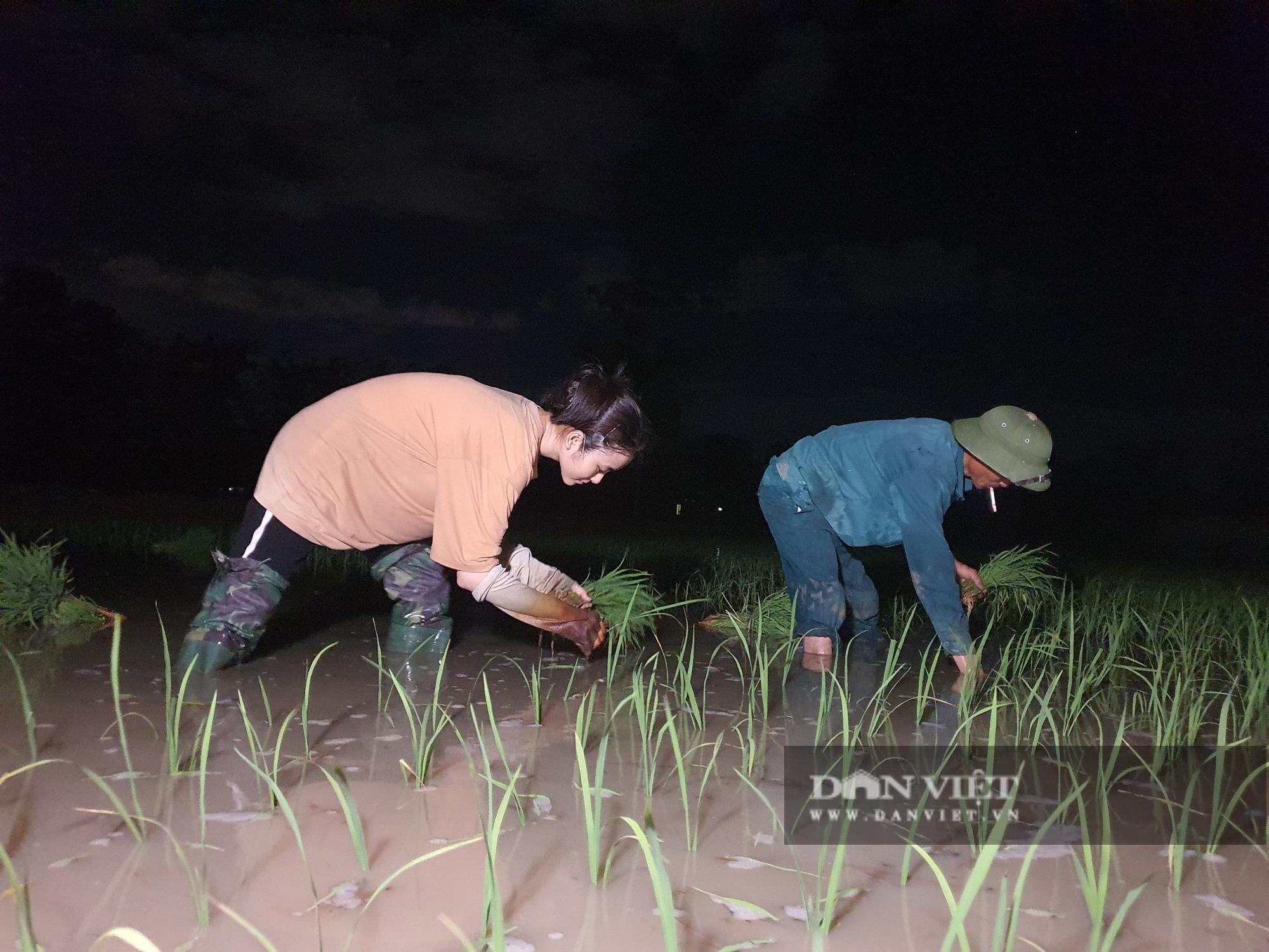 Thanh Hoá: Nắng nóng 40C nông dân Thanh Hóa chong đèn đi cấy lúa đêm  - Ảnh 7.