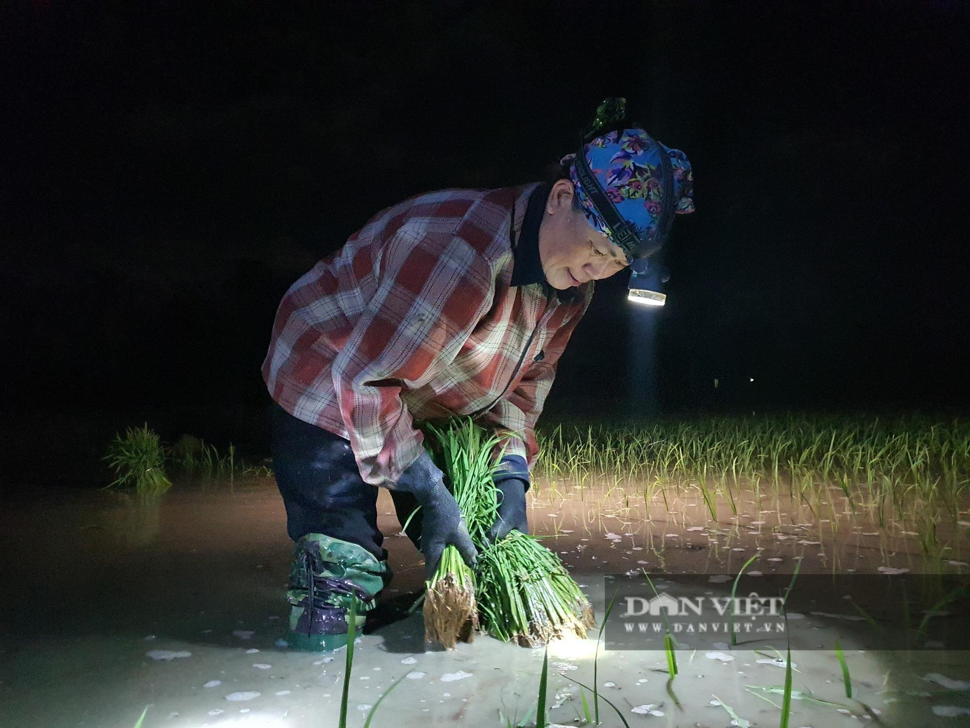 Thanh Hoá: Nắng nóng 40C nông dân Thanh Hóa chong đèn đi cấy lúa đêm  - Ảnh 10.