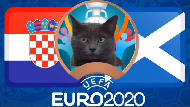 Mèo tiên tri Cass dự đoán kết quả Croatia vs Scotland: Bất ngờ! - Ảnh 2.