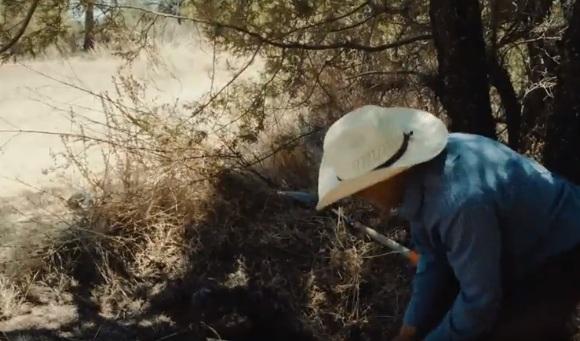 Đặc sản trứng kiến sa mạc khiến thực khách sợ hãi và ám ảnh nhưng vẫn được săn lùng vì sao? - Ảnh 4.