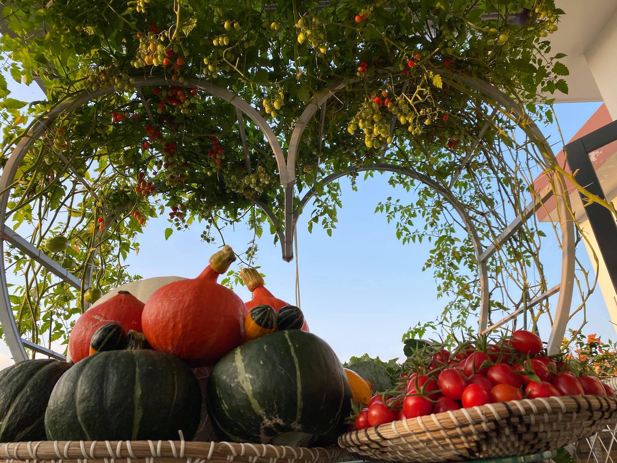 Từng không biết gì về trồng trọt, Vườn sân thượng trĩu quả  rác thải làm phân - Ảnh 11.