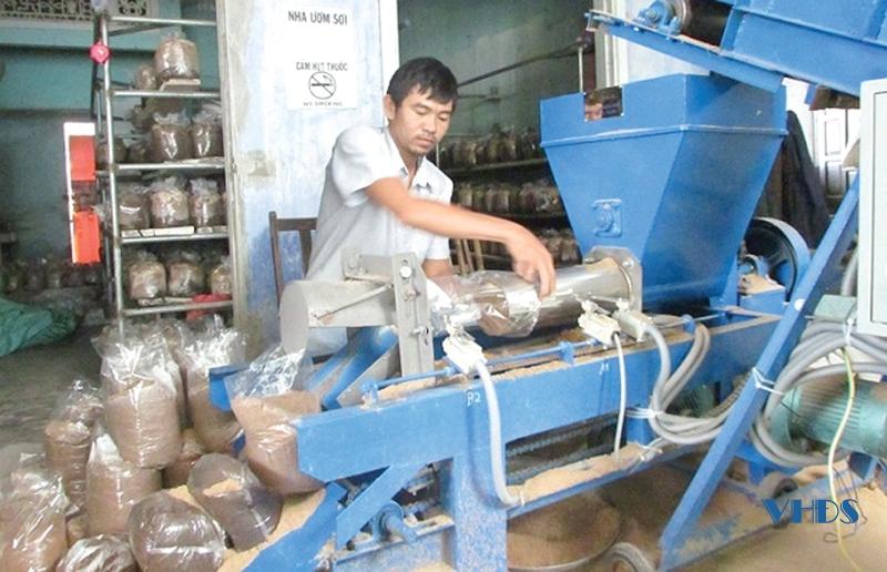 Anh thanh niên Thanh Hóa 36 tuổi đã có 3 sản phẩm OCOP trong tay từ cây nấm, doanh thu tiền tỷ mỗi năm - Ảnh 2.