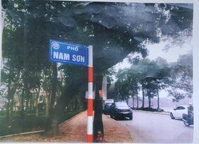 Họa sĩ Nam Sơn đã được đặt tên cho con phố mới của Hà Nội.
