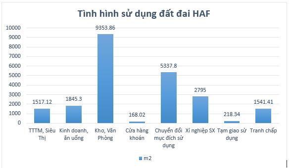 [Biz Insider]: Hé lộ quỹ đất vàng khủng tại Hà Nội, đằng sau thương vụ VPI nhận chuyển nhượng 3 triệu cổ phần HAF - Ảnh 1.