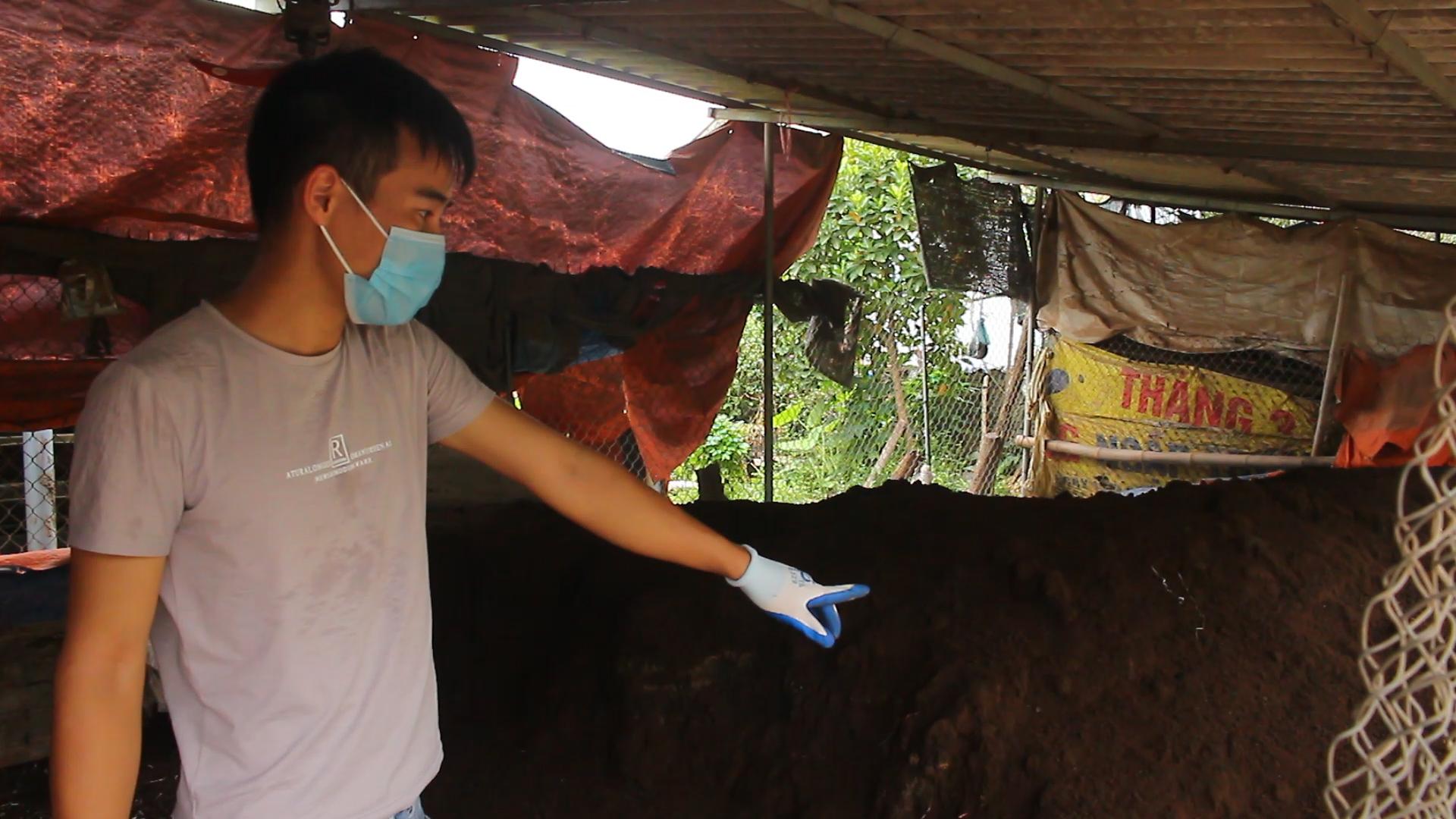 Sở hữu 20 đại lý chỉ sau 4 năm, thanh niên Hà Nội khởi nghiệp thành công từ phân trùn quế - Ảnh 2.