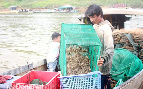 """Đồng Nai: Bắt cá tôm trên hồ thủy điện Trị An, cá sống bán đắt, cá chết ướp đá lái vẫn """"khuân"""" sạch"""