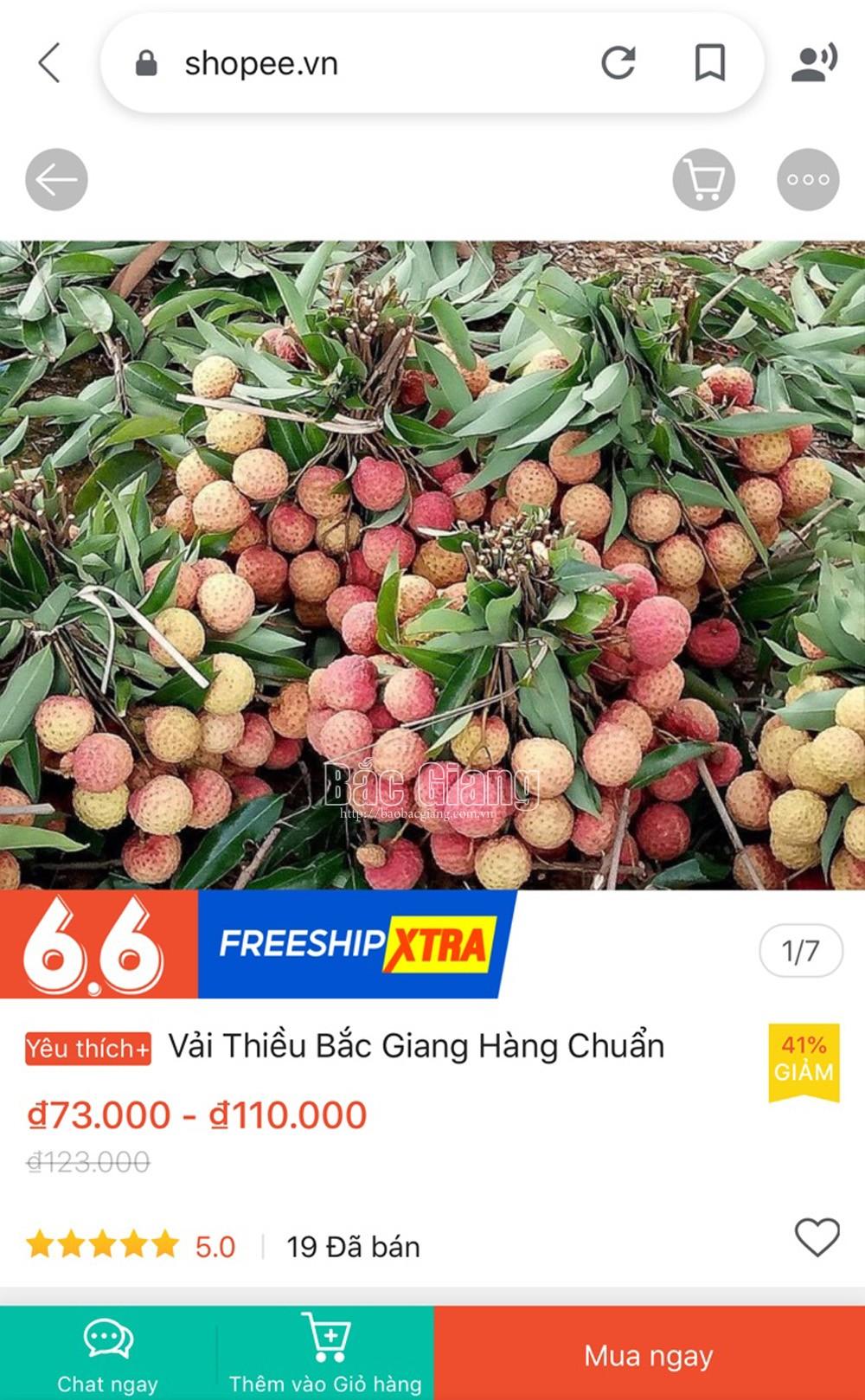 Vải thiều Bắc Giang được bán trên 6 sàn thương mại điện tử - Ảnh 1.