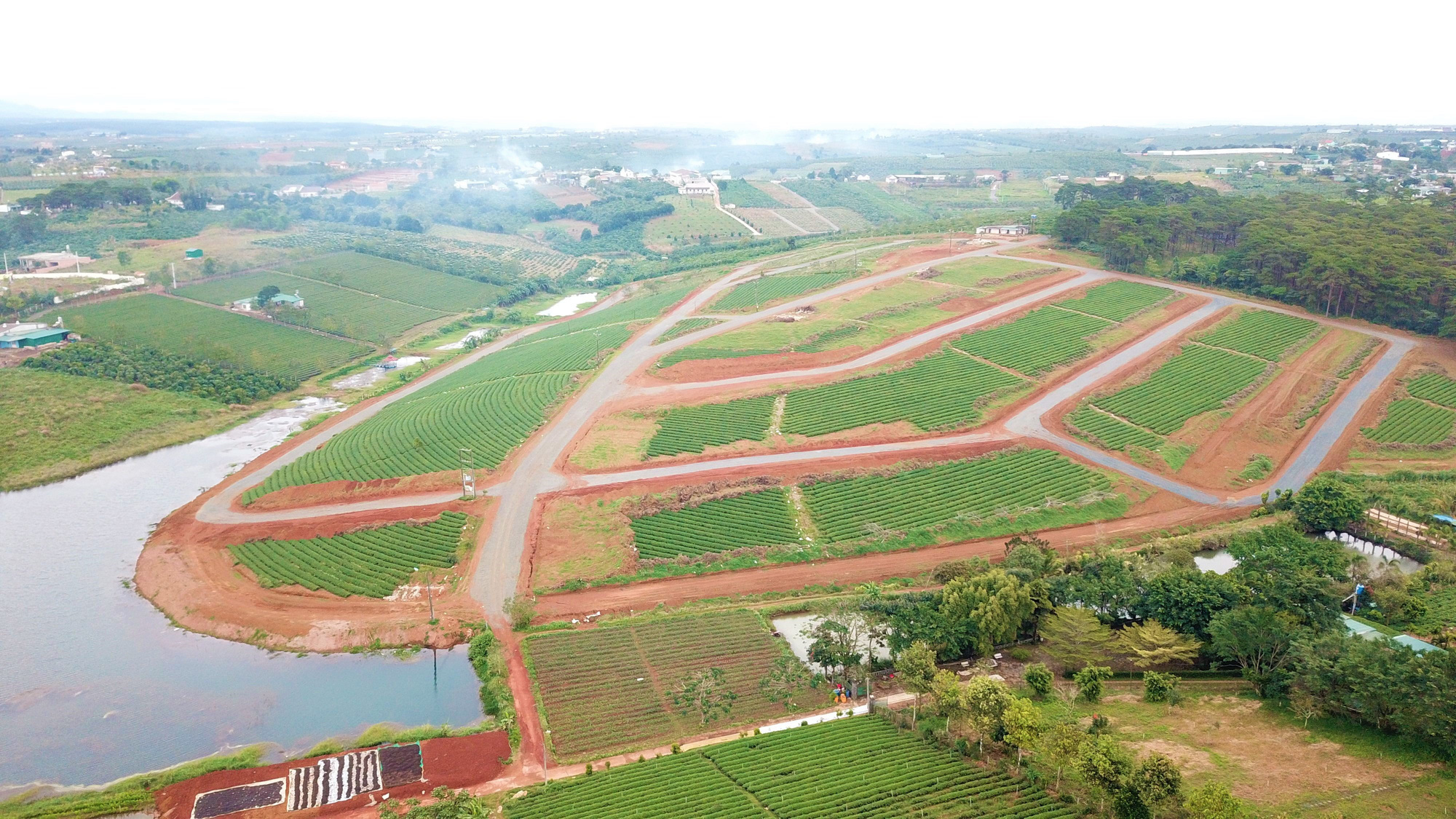 Lâm Đồng: Tạm đình chỉ công tác nhiều cán bộ do buông lỏng quản lý đất đai, xây dựng - Ảnh 1.