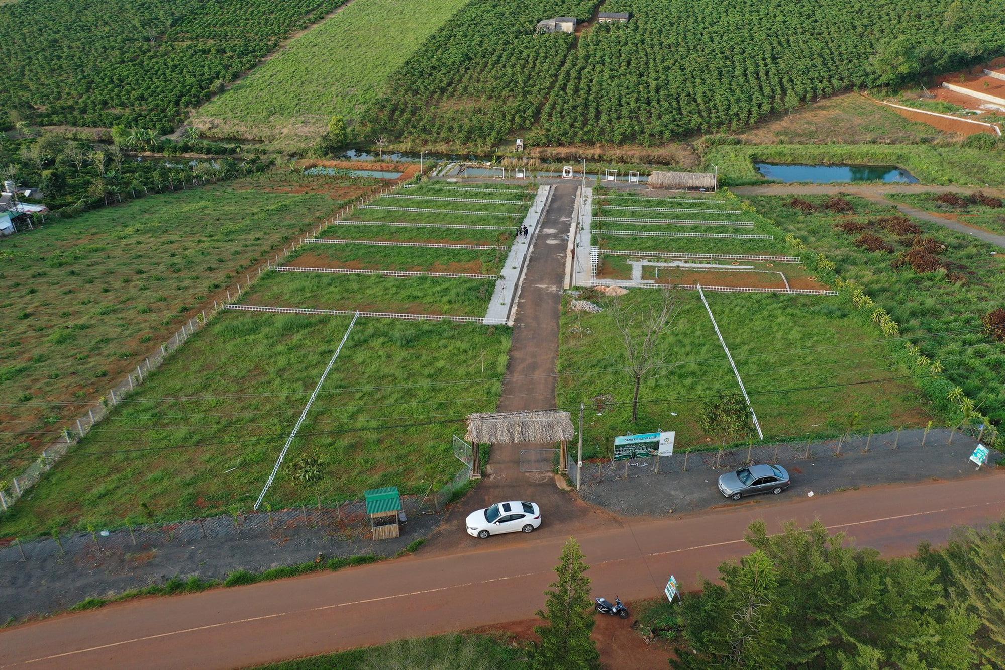 Lâm Đồng: Tạm đình chỉ công tác nhiều cán bộ do buông lỏng quản lý đất đai, xây dựng - Ảnh 3.