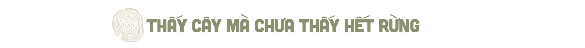 """Phía sau vụ """"thảm sát"""" rừng nghiến cổ thụ khủng nhất Việt Nam! - Ảnh 3."""