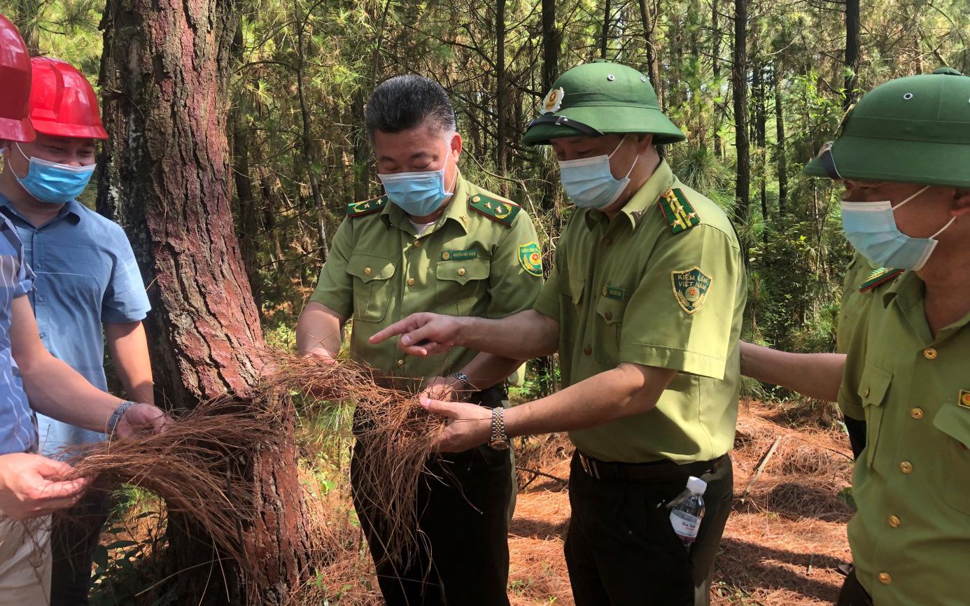 Nắng nóng gay gắt, Cục trưởng Cục Kiểm lâm đi kiểm tra phòng cháy, chữa cháy rừng tại Nghệ An, Hà Tĩnh