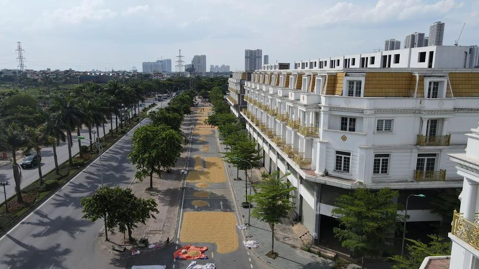 """Nông dân Hà Nội chơi sang: Phơi thóc ở """"khu nhà giàu"""" với những ngôi shophouse tiền tỷ - Ảnh 1."""