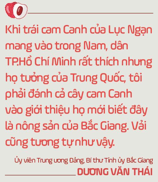 Ủy viên Trung ương Đảng, Bí thư Tỉnh ủy Bắc Giang Dương Văn Thái: Mùa vải nóng sẽ…ngọt ngào! - Ảnh 11.