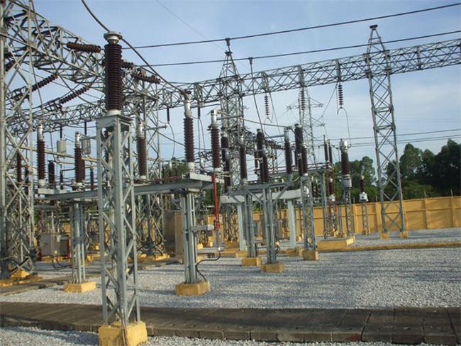 Tư vấn Xây dựng Điện 2 sắp trả cổ tức năm 2020 tỷ lệ 25% - Ảnh 1.