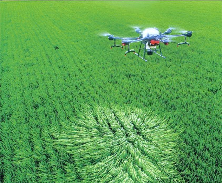 Công nghệ - Công cụ - Chính sách thúc đẩy sản xuất nông nghiệp bền vững - Ảnh 2.
