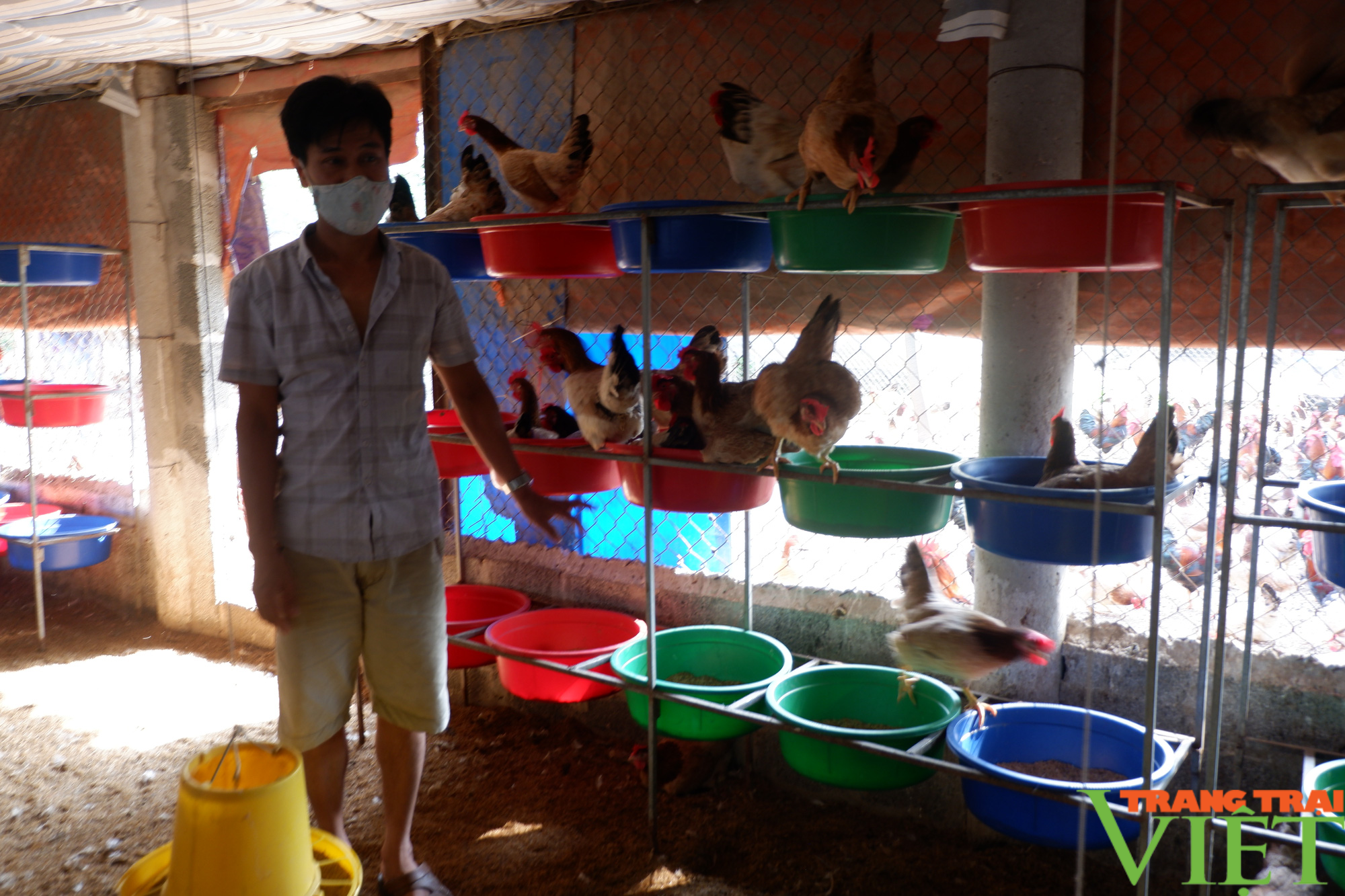 """Hòa Bình: Đệm lót sinh học là """"bí kíp"""" giúp nông dân chăn nuôi gà an toàn, thu tiền tỷ mỗi năm - Ảnh 3."""