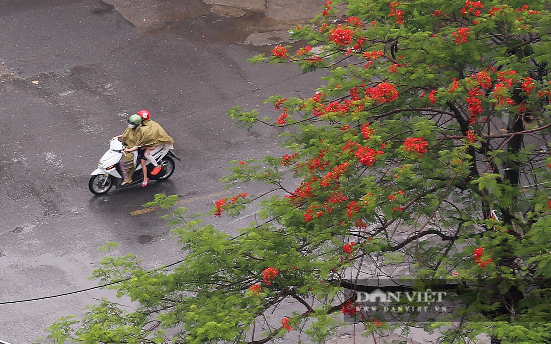Bầu trời Hà Nội mưa liên tiếp, thời tiết mát mẻ sau nhiều ngày nắng nóng gần 40 độ C - Ảnh 9.