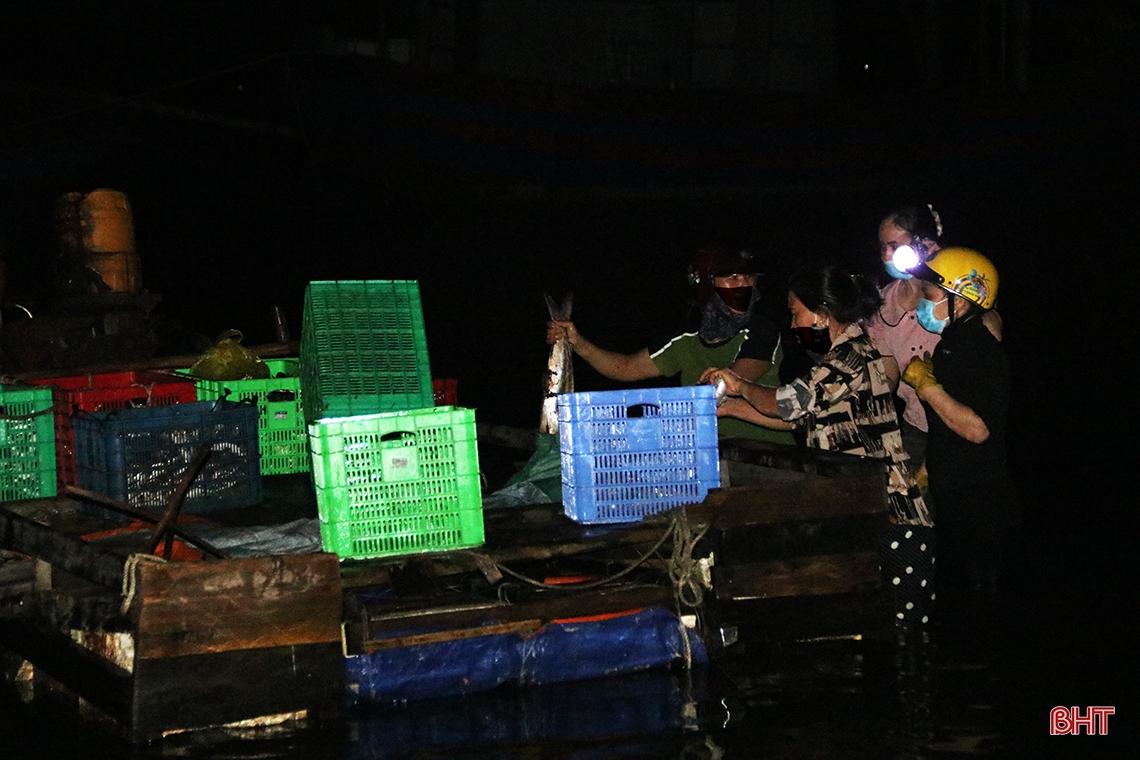 Hà Tĩnh: Hàng chục năm đi biển mới trúng mẻ cá hiếm gặp, ngư dân thu hàng trăm triệu đồng nhờ loài cá quý này - Ảnh 4.