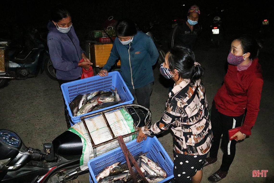 Hà Tĩnh: Hàng chục năm đi biển mới trúng mẻ cá hiếm gặp, ngư dân thu hàng trăm triệu đồng nhờ loài cá quý này - Ảnh 9.