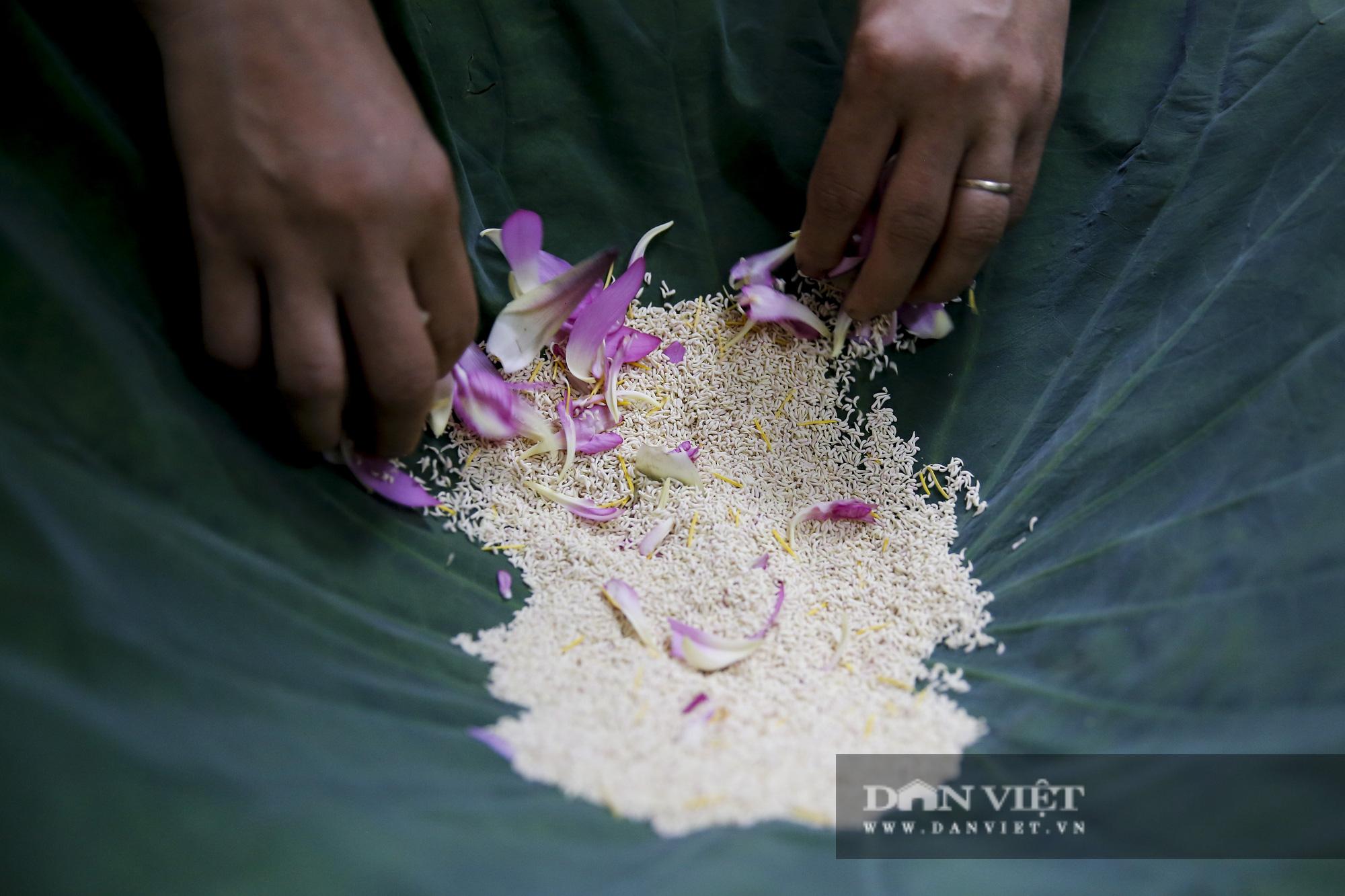 Tận mắt xem quy trình ướp trà sen đắt nhất Việt Nam - Ảnh 6.