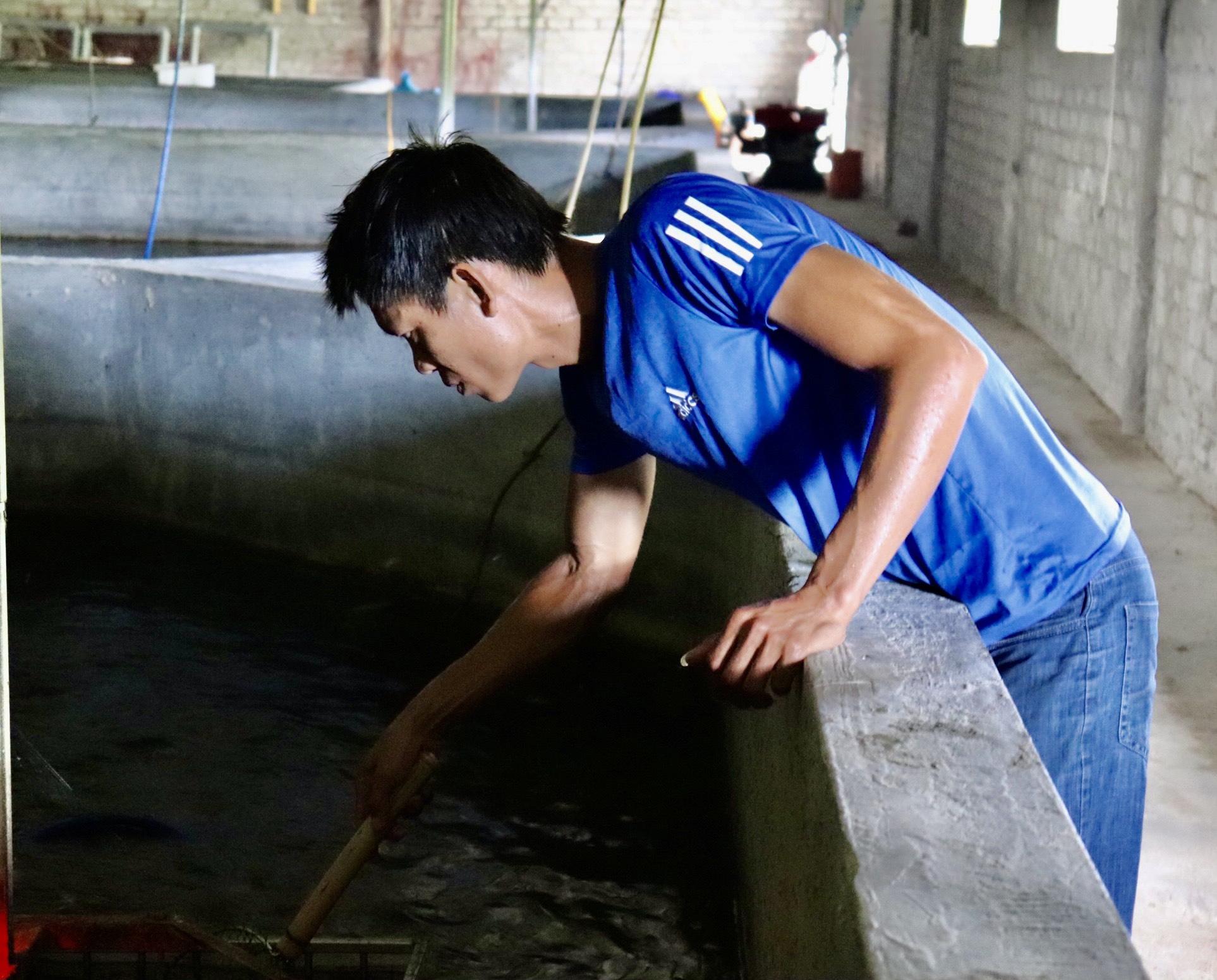 """Quảng Bình: Nuôi loài cá """"ngày ngủ đêm ăn"""" mấy tháng thu tiền tỷ - Ảnh 3."""