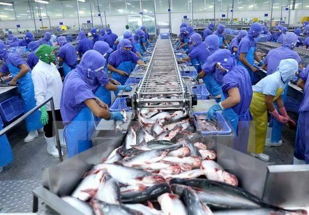 Thêm tín hiệu khả quan cho cá tra Việt vào Mỹ - Ảnh 1.