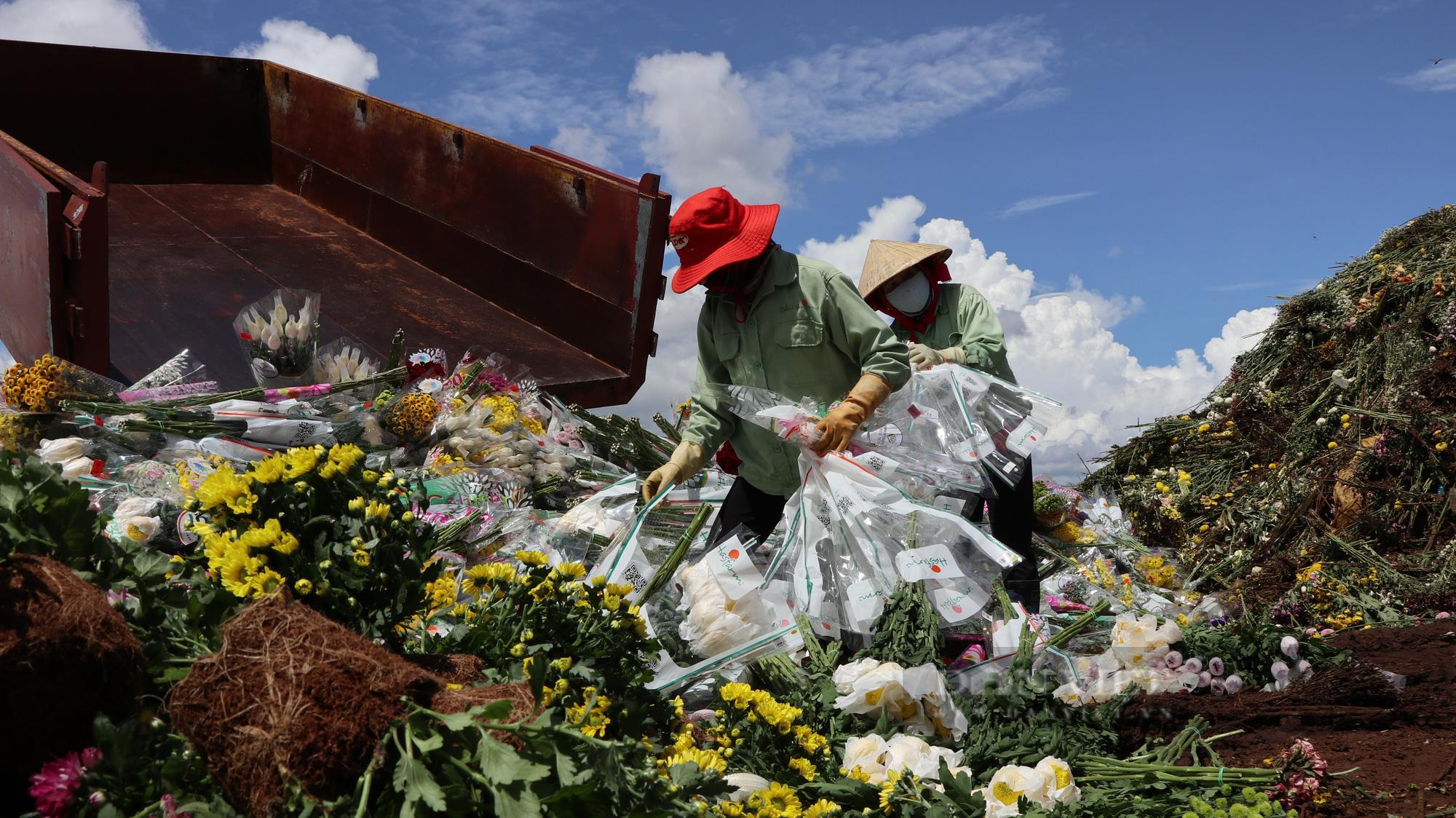 """Doanh nghiệp và người dân """"khóc ròng"""" vì hàng trăm nghìn cành hoa xuất khẩu bị trả ngược - Ảnh 1."""