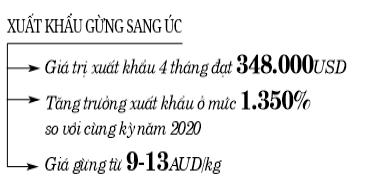 Gừng Việt rộng cửa vào Úc  - Ảnh 2.