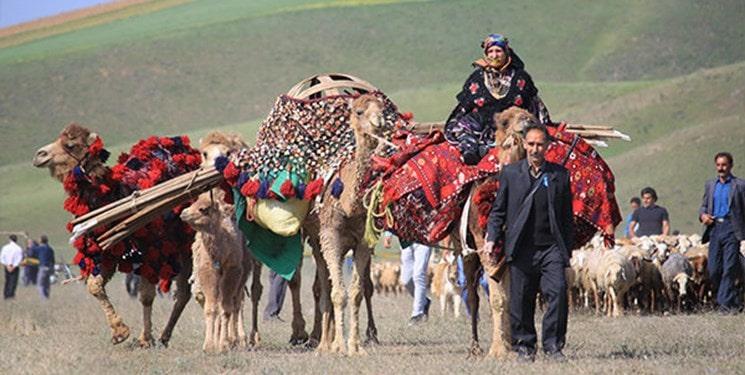 Bộ lạc du mục Qashqa'i chỉ cho phép đàn ông đa thê theo lựa chọn của vợ - Ảnh 4.