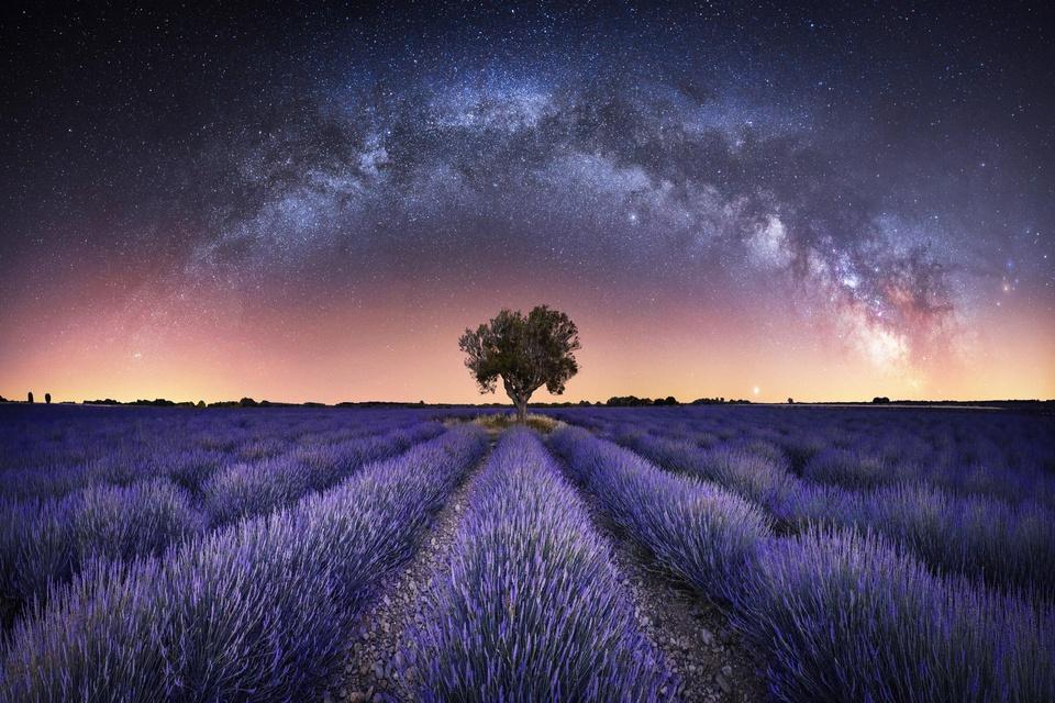 10 bức ảnh đẹp nhất giải Nhiếp ảnh thiên văn của năm - Ảnh 2.