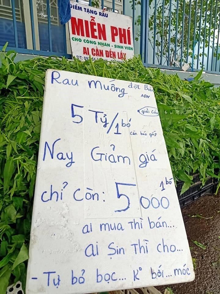 Anh bán rau khiến MXH dậy sóng: Rau muống đột biến 5 tỷ/bó nhưng sẵn sàng mang cho những người khó khăn - Ảnh 2.