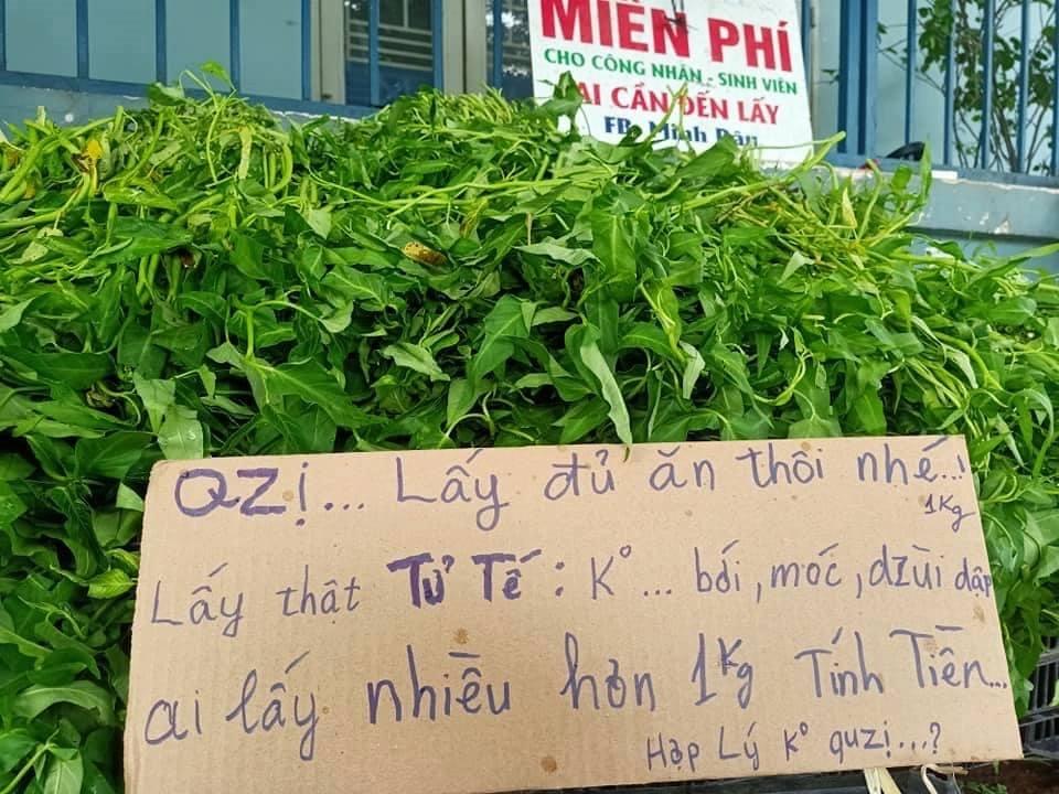 Anh bán rau khiến MXH dậy sóng: Rau muống đột biến 5 tỷ/bó nhưng sẵn sàng mang cho những người khó khăn - Ảnh 7.
